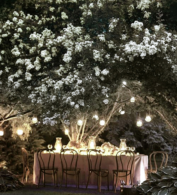 A moon garden is comprised primarily of white and pale flowers that bloom at night. When the moon shines bright overhead it looks like there are lights on in the garden.   Photo courtesy of econesting.com