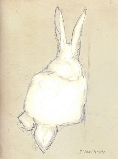 This board contains old art, photograph and interesting ways to display them.  This rabbit sketch is by J Van Noate.