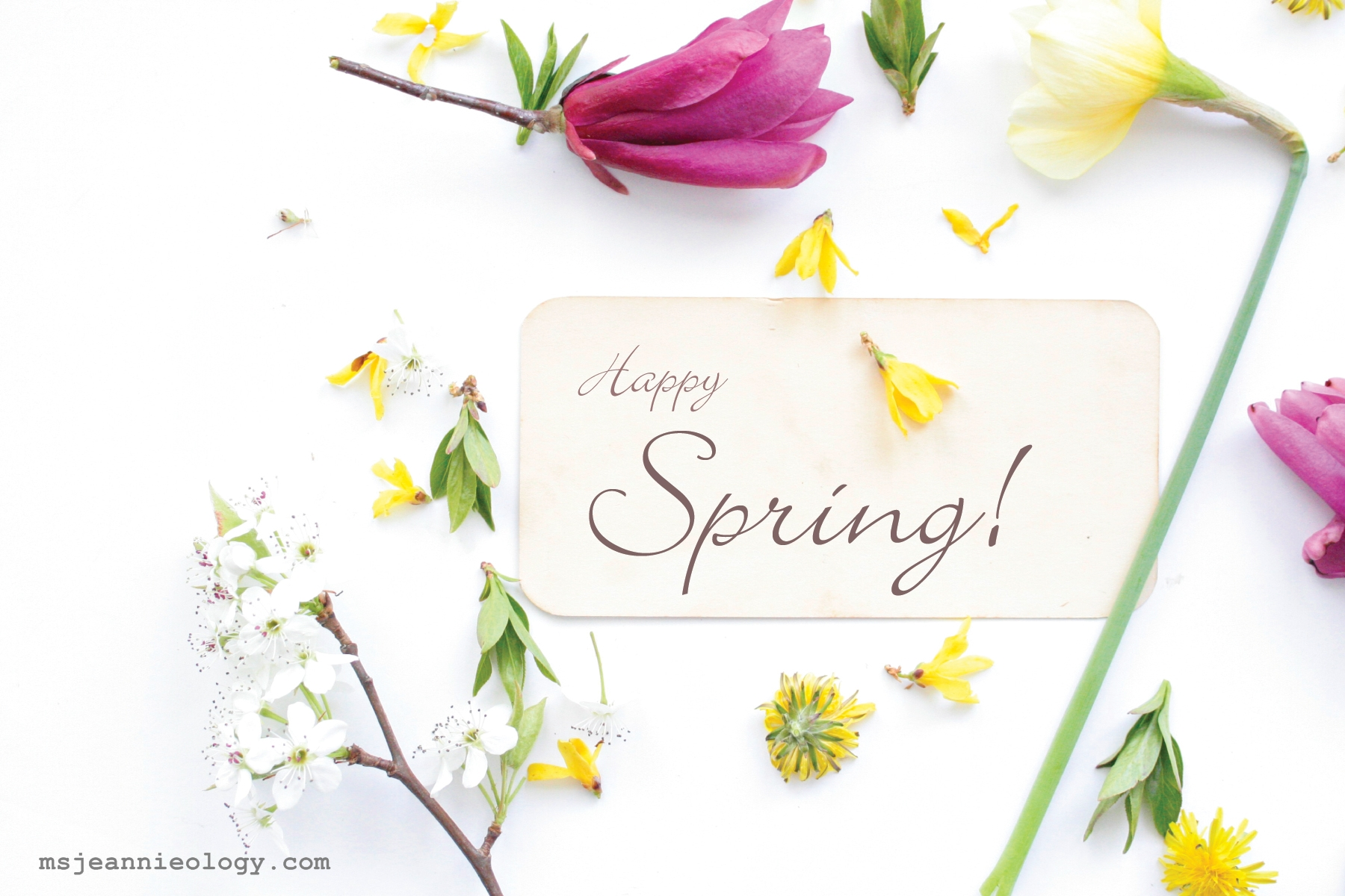 Happy first day of spring in the vintage kitchen where history happy spring m4hsunfo