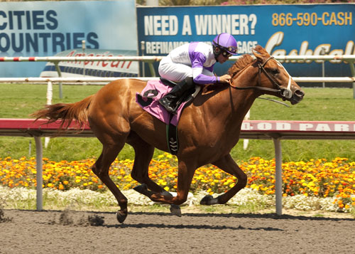 I'll Have Another and jockey, Mario Gutierrez, win the 2012 Kentucky Derby!