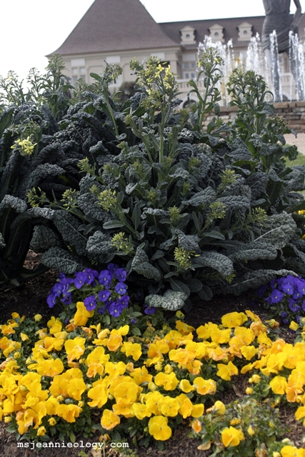 Innovative flower beds!