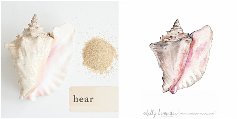A queen conch shell in two mediums!