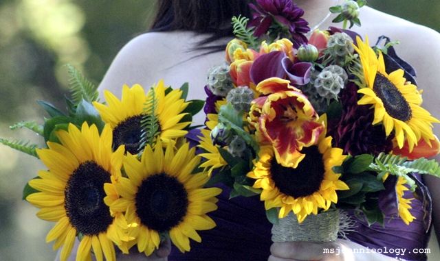 Sunflowers, kale, ferns, purple dahlias, a purple bean pod looking plant, shiny green leaves and deep red calla lilies made up each table arrangement. The addition of red and yellow striated tulips were added to the bridal bouquet .