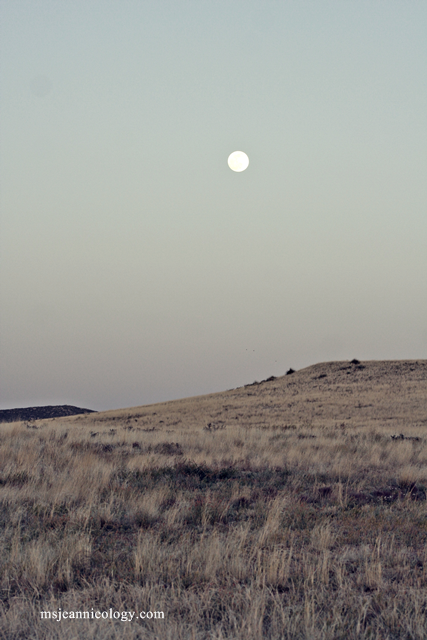 Moonrise in the desert mountains.