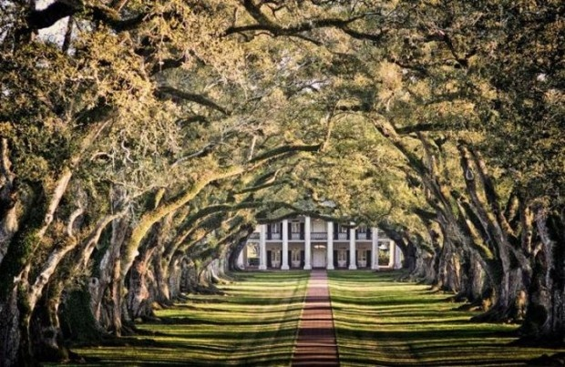 Twelve Oaks Plantation