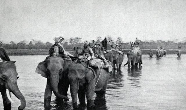 Crossing the river on the way to a tiger kill.