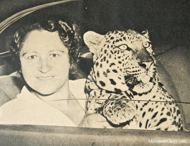 Olga Celeste and her leopard Neissa. Photo courtesy of Click Magazine, February 1938.