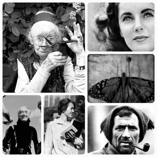 A partal list of true adventurers. Clockwise from top left: Photographer Imogen Cunningham, Elizabeth Taylor, Monarch Butterfly, Explorer Tom Crean, Aviator Anne Morrow Lindbergh and Explorer Jacques Cousteau. To visit Ms. Jeannie's board and see all the adventurers click the photo.