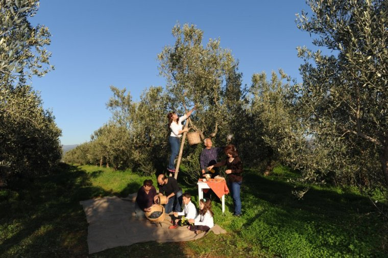 In the olives!